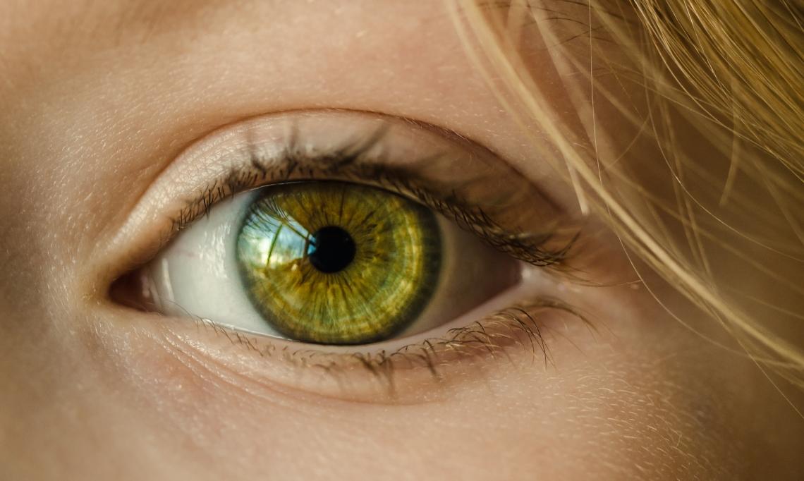 Safe 2 See Forte Vision