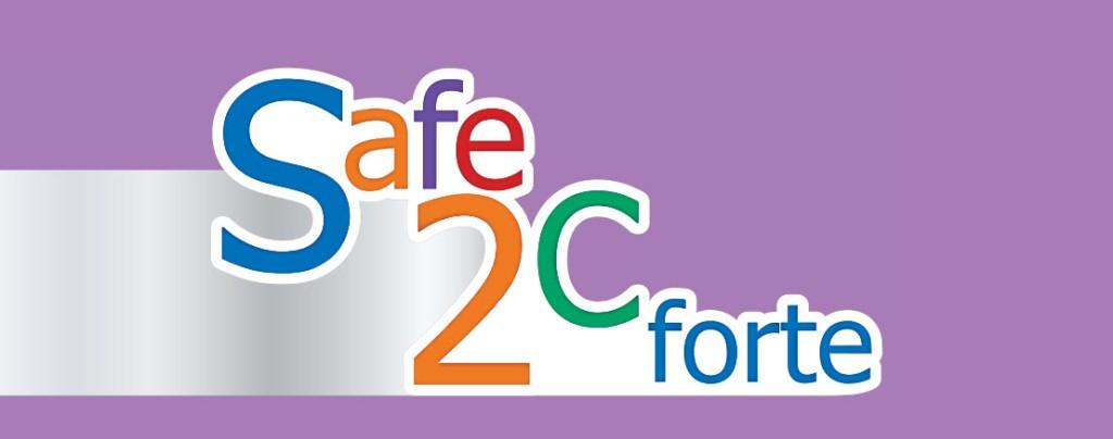 safe 2 see forte 0