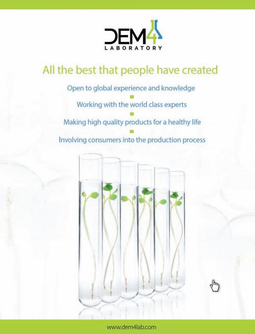 DEM4 Laboratory Vision