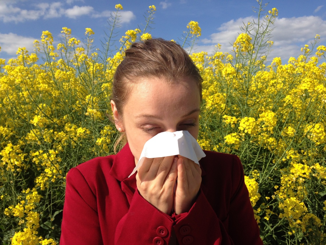 allergies best products