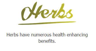 Bio Drink Vision Herbs